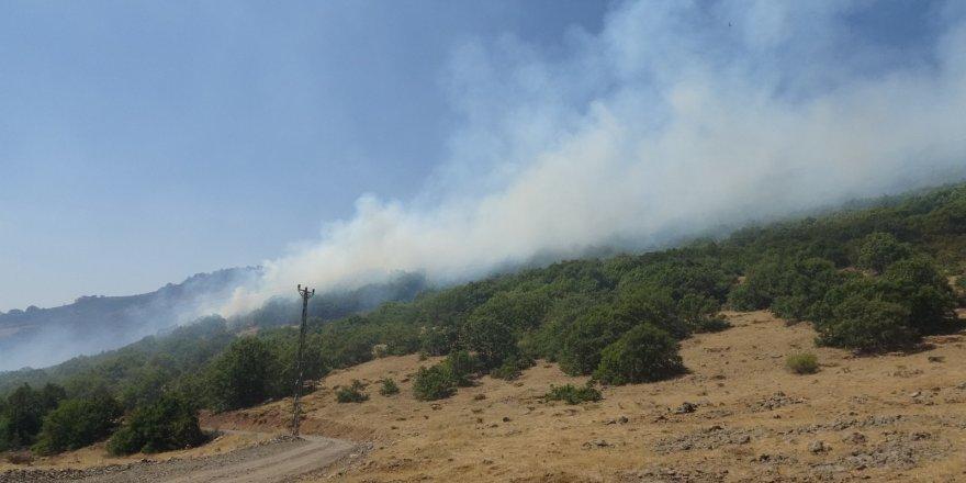 Bingöl'deki Orman Yangına 100 Kişilik Ekip Müdahale Ediyor