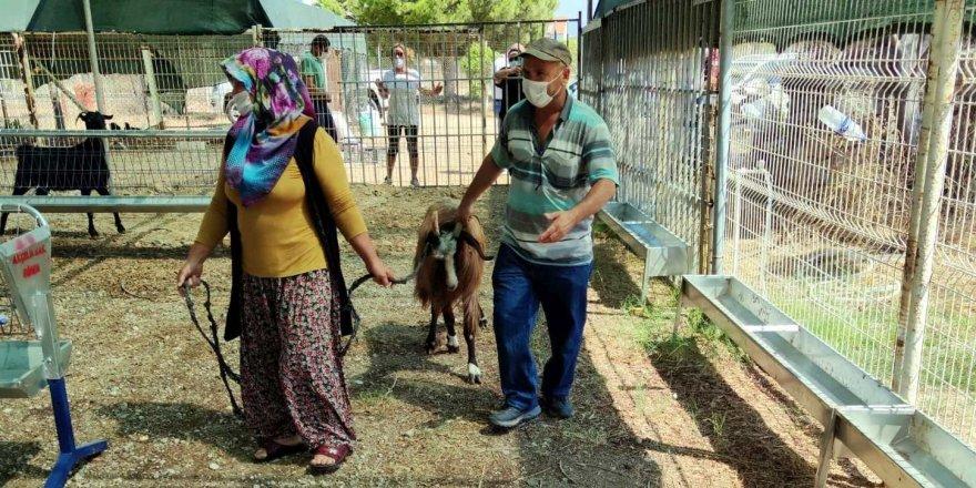 Yangında hayvanları telef olan vatandaşlara büyük destek!