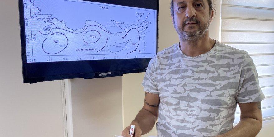 """Prof. Dr. Turan: """"Petrol sızıntısı İskenderun Körfezini de tehdit edebilir"""""""